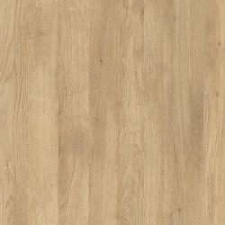 ЛДСП цвет Дуб скальный 145 (под заказ)